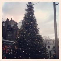 Christmas Tree in South Kensington